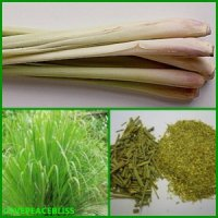 The Alkalizing Health Benefits of Lemon Grass