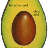 Eat Avocado to Prevent and/or Reverse Cardiovascular Disease, Diabetes and Cancer!