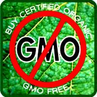 Just Say NO to GMO!