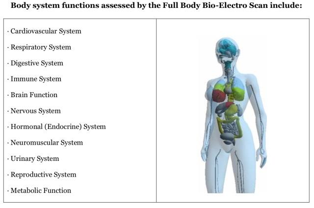 Bodysystemtested
