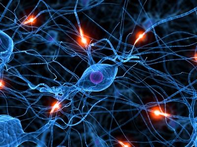 ms-dysautonomia-stimulating-nerve-fibers