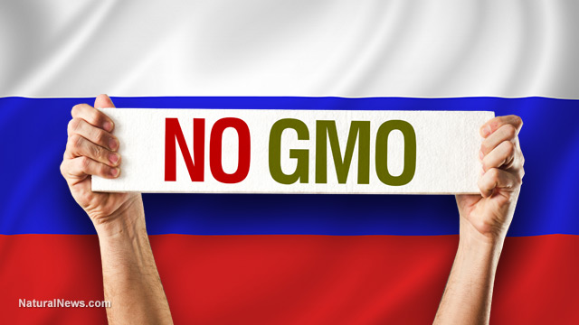 No-GMO-Flag-Russia-1