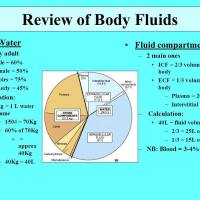 THE IMPORTANCE OF MAINTAINING THE ALKALINE DESIGN OF YOUR BODY FLUIDS & TISSUES IN THE PREVENTION & TREATMENT OF ANY SICKNESS OR DISEASE!