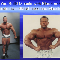 YOU BUILD STRONG MUSCLES AND BONES WITH BLOOD NOT ANIMAL PROTEIN!