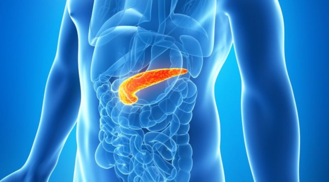 Where Is The Genesis of Pancreatic Cancer? What is the Cause & Is There a Cure?